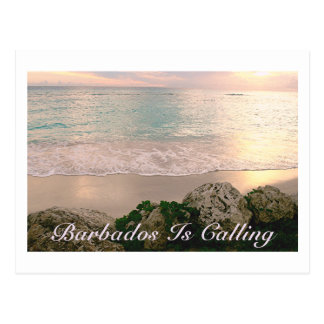 """POSTCARD/""""BARBADOS IS CALLING""""/SOFT MUTED COLORS POSTCARD"""