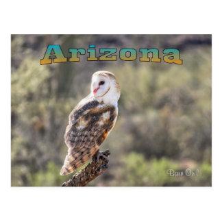 Postcard: Barn Owl #1 (Landscape)