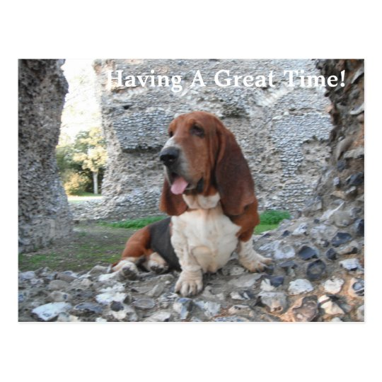 Postcard Basset Hound Castle Ruin Visit