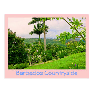 "postcard, ""BEAUTIFUL BARBADOS COUNTRYSIDE (PHOTOG) Postcard"