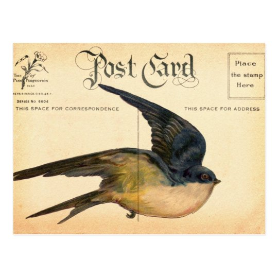 Postcard Bird Digital Art
