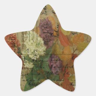 Postcard Blooms Star Sticker
