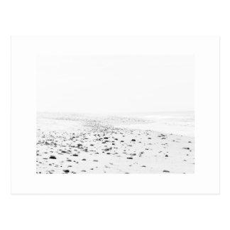 Postcard Cape Cod Seashore