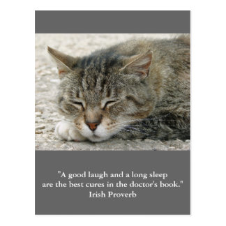 Postcard cat with quote a good laugh and…