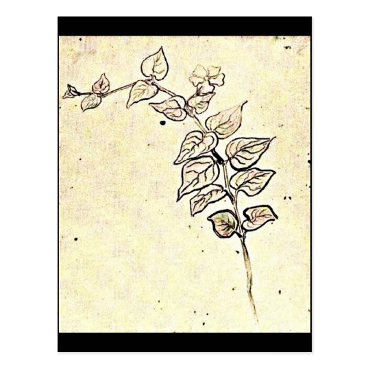 Postcard-Classic/Vintage-Vincent Van Gogh 208 Postcard