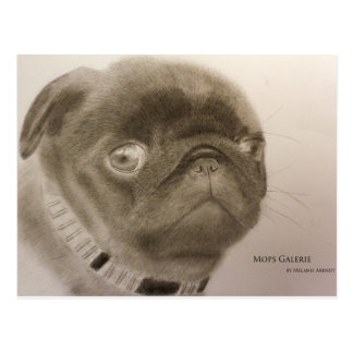 "Postcard ""design pug puppy"