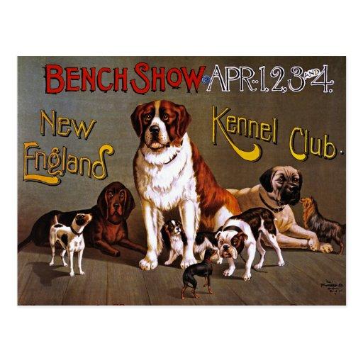 Postcard: Dog Show: Bench Show 1890