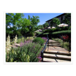 Postcard - Garden Walk to Beringer Winery CA