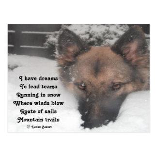 Postcard I Have Dreams Poem By Ladee Basset