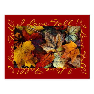 Postcard - 'I Love Fall' by Joanne Coyle