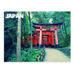 Postcard - Japan - Torii Gates in Kyoto
