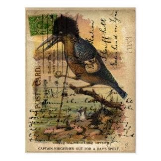Postcard Kingfisher