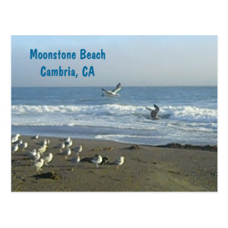 Postcard: Moonstone Beach, Cambria, C Postcard