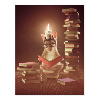 "Postcard: ""Mouse reading a book"" Postcard"