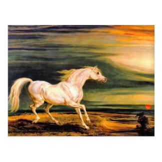 Postcard Napoleon s Marengo