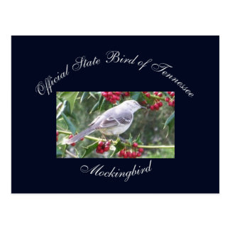 Postcard - Official state bird of Tennessee