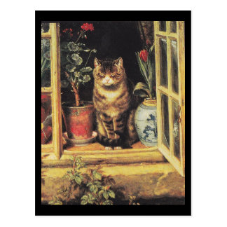 Postcard: Tabby cat in window sill Postcard