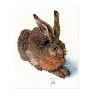 Postcard:  The Rabbit