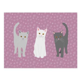 Postcard three cats