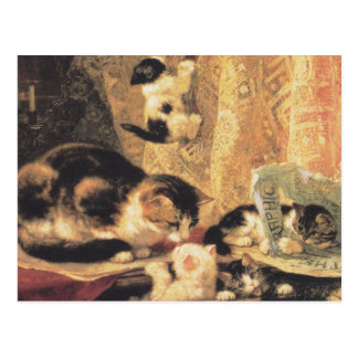 Postcard: tortoiseshellcat and kittens postcard