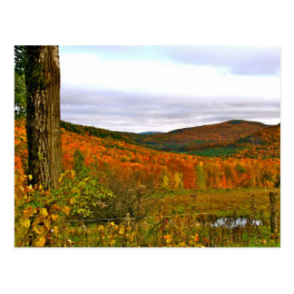 Postcard Vermont Fall