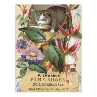 Postcard: Vintage card cat 2