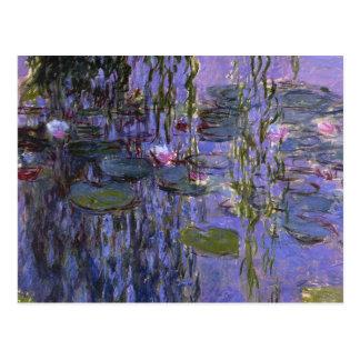 Postcard - Water Lillies