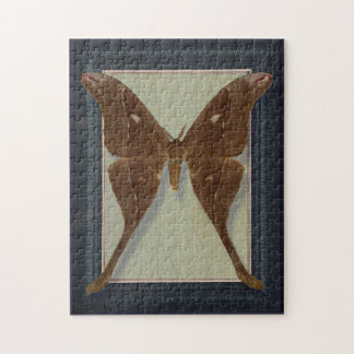 Postcard with Saturnidae moth Puzzles