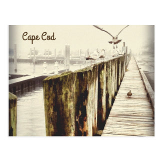 Postcards from Cape Cod (Seagull Harbour)