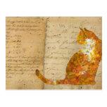 Postcrossing Cat Postcard