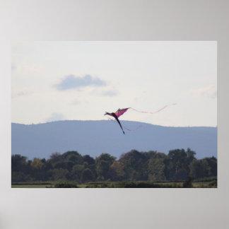 Poster - Adirondack's kite flying
