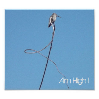 Poster: Aim High ! Poster