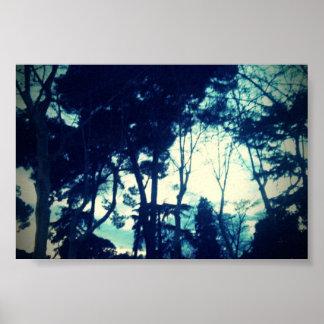 Poster Bosque Azul