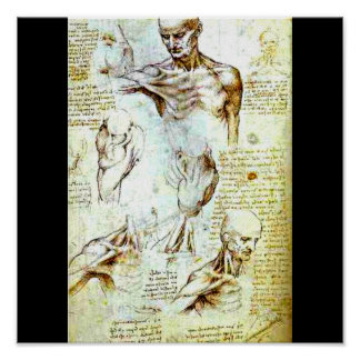 Poster-Classic/Vintage-Leonardo da Vinci 13 Poster