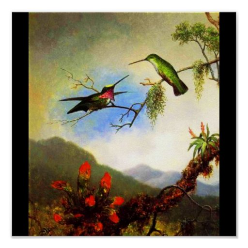 Poster-Classic/Vintage-Martin Johnson Heade 1 Poster
