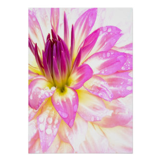POSTER FLORAL PINK AND WHITE