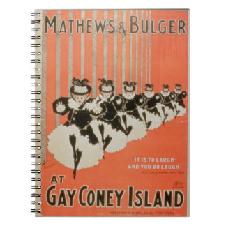Poster for 'Mathews & Bulger' at Gay Coney Island Notebook