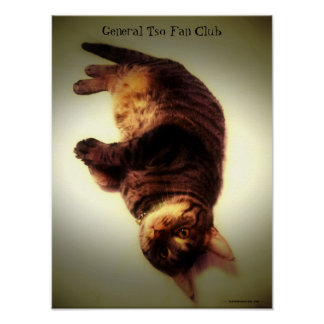Poster - General Tso Fan Club