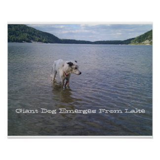 Poster, Giant Dog Emerges From Lake Poster