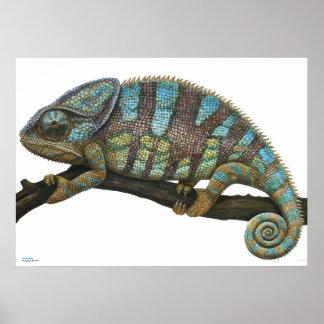 Poster of Chameleon