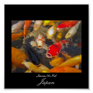Poster of Koi Fish in Japan