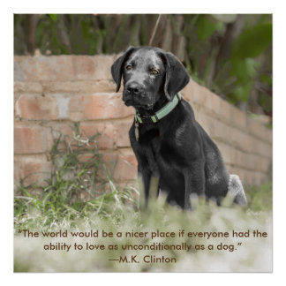 Poster of Labrador Puppy with  Inspirational Quote