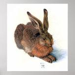 Poster/Print:  The Rabbit