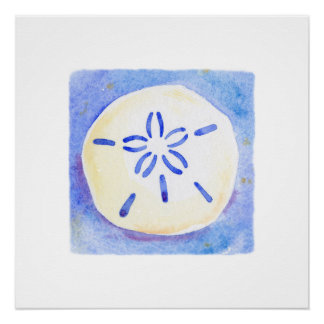 Poster - sand dollar - watercolor