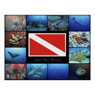 Poster Save Our Oceans