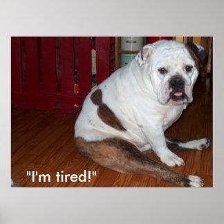"Poster - ""Sullivan"", the English Bulldog"