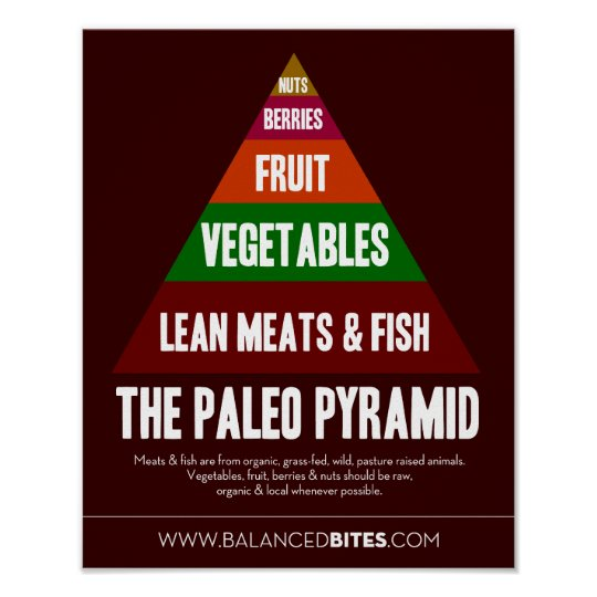Poster: The Paleo Pyramid Poster
