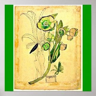 Poster-Vintage-Charles Rennie Mackintosh 21 Poster