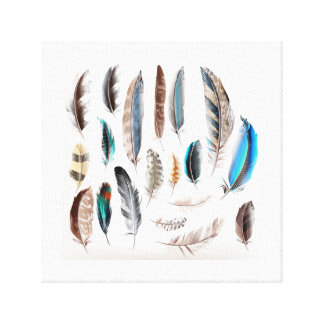Poster with feathers : Original art Canvas Print