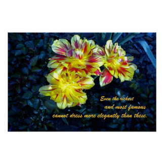 Poster with tulips: Paraphrase Matthew 6:29
